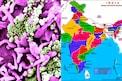 India Corona Cases: కరోనా రోజురోజుకూ ఇలా స్పీడ్ పెంచుతుందేంటి.. భారత్లో 24 గంటల్లో ఇన్ని
