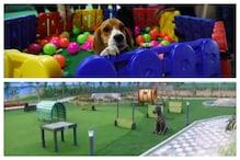 Dog park : కుక్కల కోసం దేశంలో అతిపెద్ద పార్క్.. వాకింగ్ ట్రాక్..జిమ్.. లాంటీ ఆధునిక సౌకర్యాలు..!